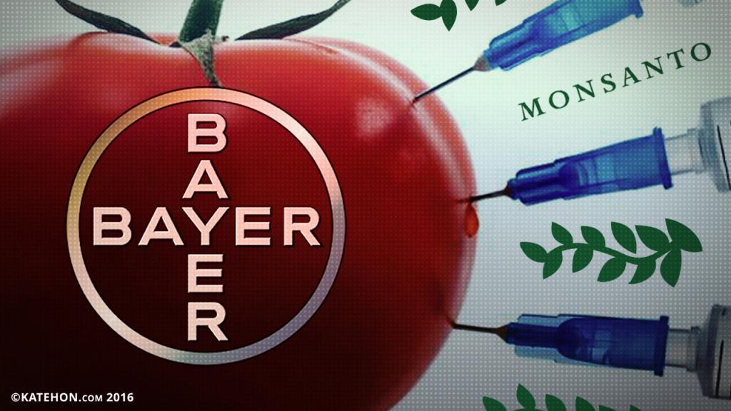 bayer_0